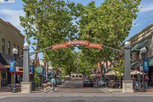 134 Carroll St 302, Sunnyvale, CA 94086 (#BE40954802) :: Real Estate Experts