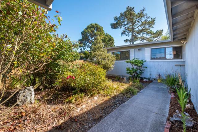 1022 Fassler Ave, Pacifica, CA 94044 (#ML81722701) :: Strock Real Estate