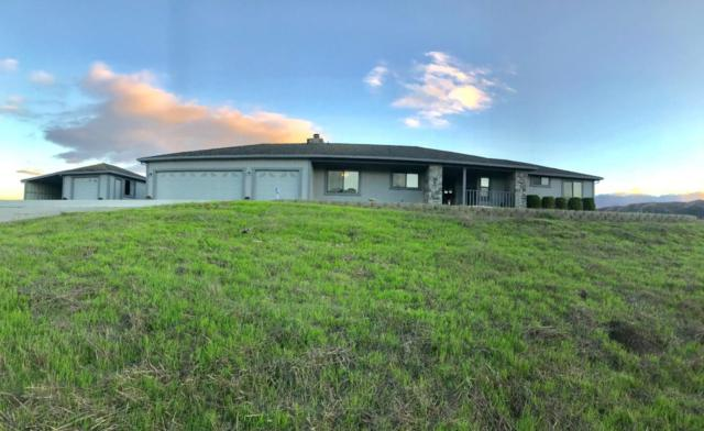 410 Oak View Ct, San Juan Bautista, CA 95045 (#ML81729540) :: Brett Jennings Real Estate Experts