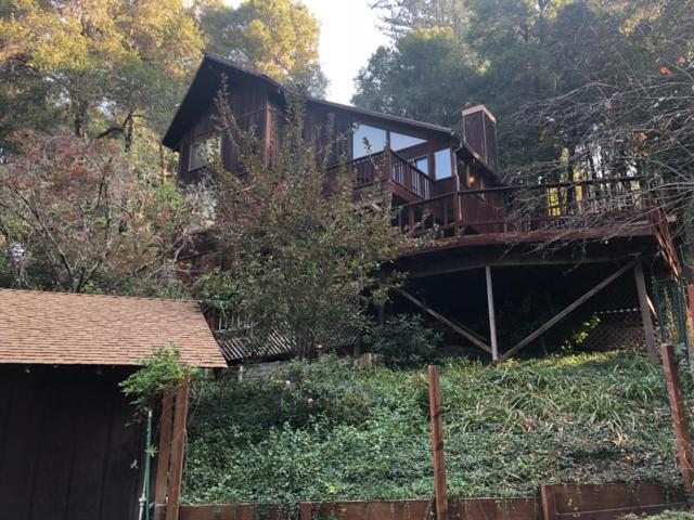 17384 Tressel Pass Rd, Boulder Creek, CA 95006 (#ML81730690) :: The Goss Real Estate Group, Keller Williams Bay Area Estates