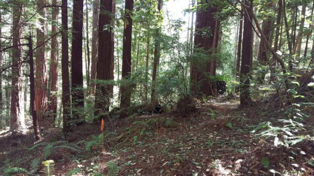 0 Dearborn Park Rd, Pescadero, CA 94060 (#ML81731782) :: Strock Real Estate