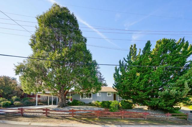 3313 Plateau Dr, Belmont, CA 94002 (#ML81733061) :: Live Play Silicon Valley