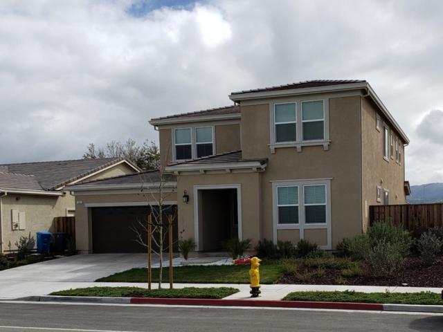 1561 Buena Vista Rd, Hollister, CA 95023 (#ML81743938) :: The Gilmartin Group