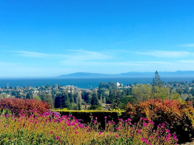 105 Longview Dr, Santa Cruz, CA 95060 (#ML81746270) :: Brett Jennings Real Estate Experts