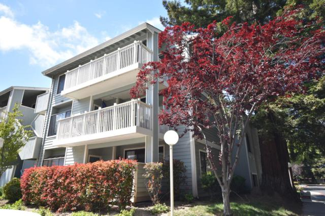 3395 Pinewood Ter 104, Fremont, CA 94536 (#ML81747637) :: The Realty Society