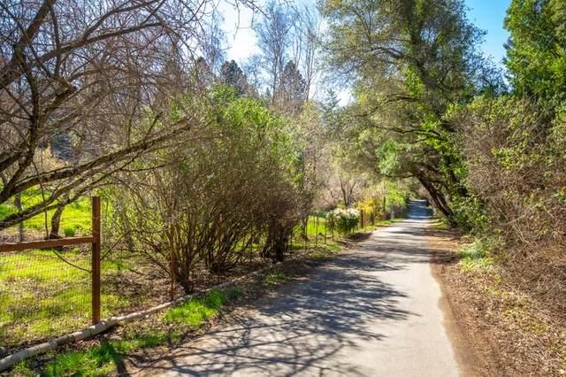 Lot 03 Robles Dr, Santa Cruz, CA 95060 (#ML81785814) :: The Goss Real Estate Group, Keller Williams Bay Area Estates
