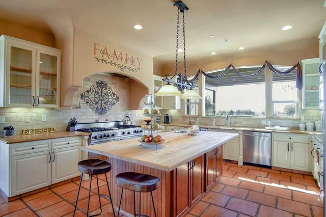 6616 Pacheco Creek Dr, Hollister, CA 95023 (#ML81792093) :: The Realty Society