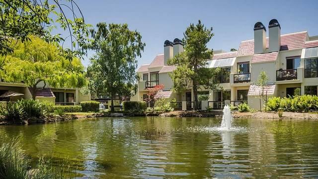 227 Shorebird Cir, Redwood City, CA 94065 (#ML81799703) :: Real Estate Experts
