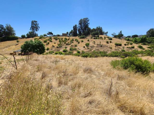 51230 Oak Hills Rd, King City, CA 93930 (#ML81802617) :: Intero Real Estate