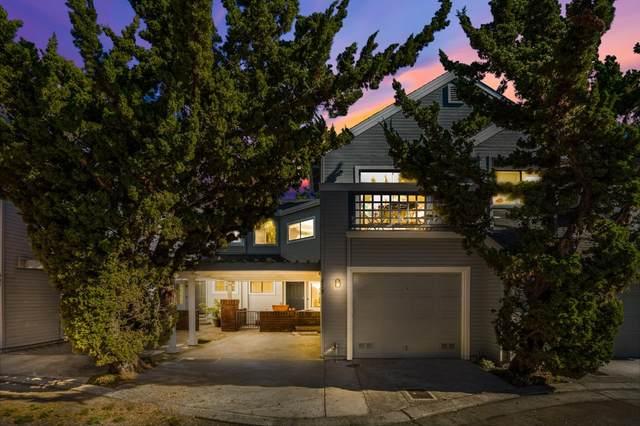 439 Mountain Laurel Ct, Mountain View, CA 94043 (#ML81803926) :: Robert Balina   Synergize Realty