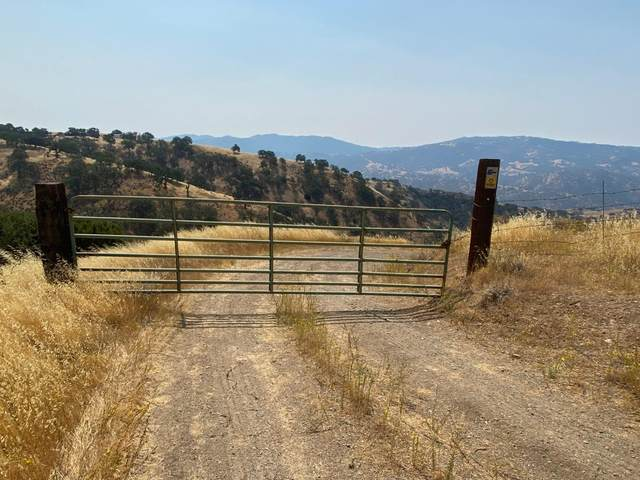 Lot 21 Panoche Rd, Paicines, CA 95043 (#ML81806736) :: The Gilmartin Group