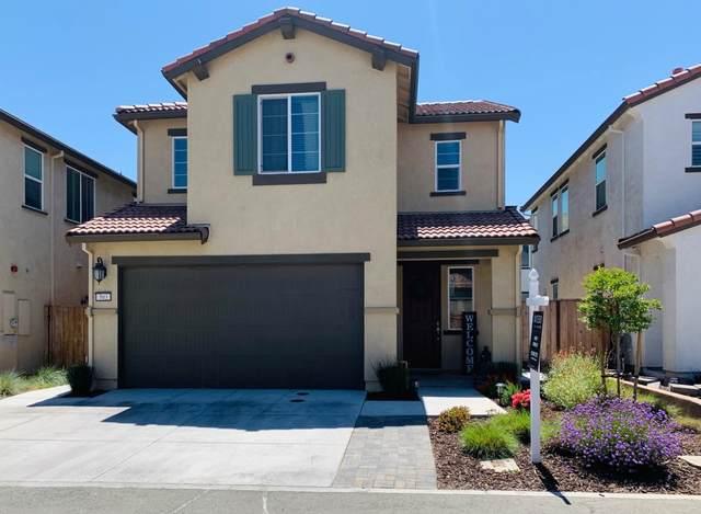 503 Egret Ln, Hollister, CA 95023 (#ML81843404) :: Schneider Estates