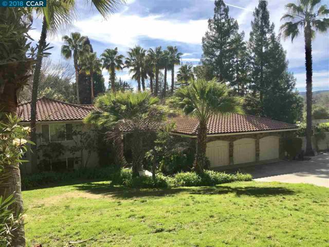 2315 Caballo Ranchero, Diablo, CA 94528 (#CC40807723) :: The Kulda Real Estate Group