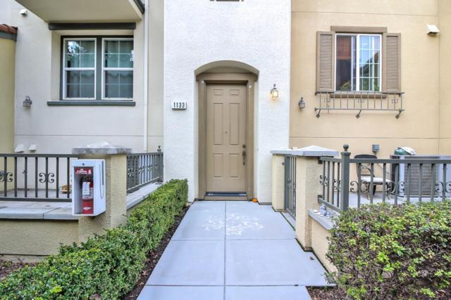 1133 Luz Del Sol Loop, Milpitas, CA 95035 (#ML81688942) :: The Goss Real Estate Group, Keller Williams Bay Area Estates