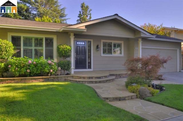 4598 Shearwater Rd, Pleasanton, CA 94566 (#MR40830873) :: The Warfel Gardin Group