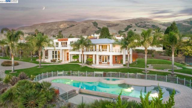 867 Boar Ter, Fremont, CA 94539 (#BE40850551) :: Strock Real Estate