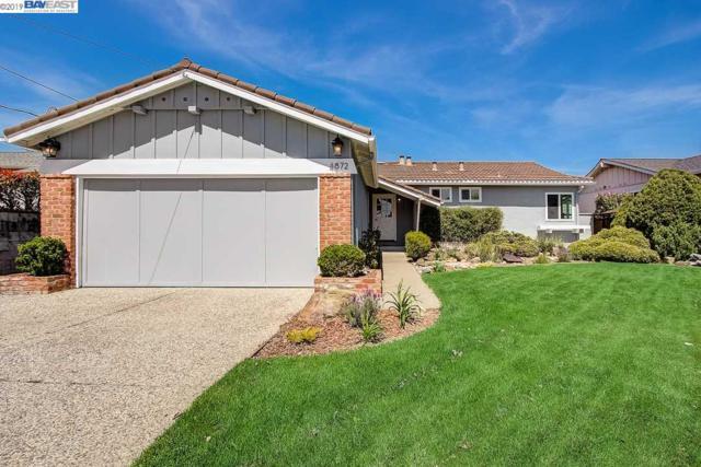 4872 Larimer Way, Castro Valley, CA 94546 (#BE40862141) :: Strock Real Estate