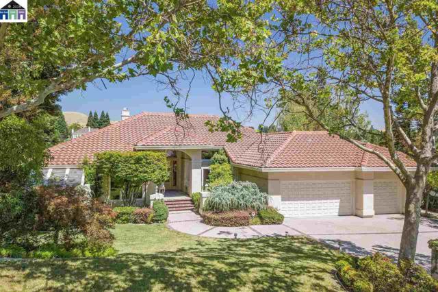 5387 Blackhawk Dr, Danville, CA 94506 (#MR40863828) :: Strock Real Estate