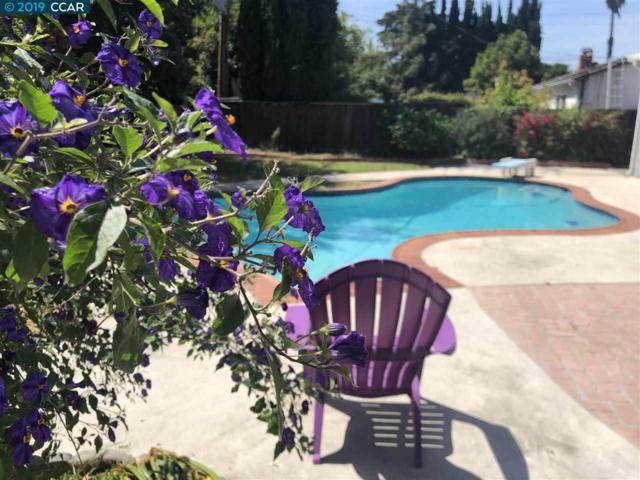 4242 Wilson Ln, Concord, CA 94521 (#CC40864859) :: Strock Real Estate