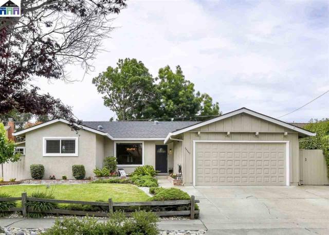 36867 Dauphine Avenue, Fremont, CA 94536 (#MR40865849) :: Strock Real Estate
