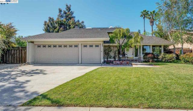 589 Tawny Dr, Pleasanton, CA 94566 (#BE40866043) :: Strock Real Estate