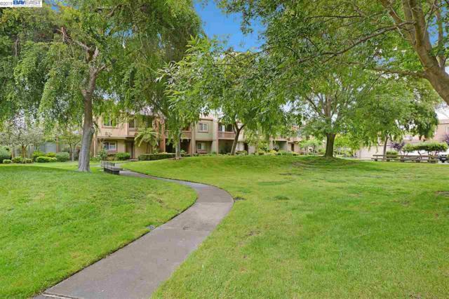 3207 Phoenix Ln, Alameda, CA 94502 (#BE40866059) :: Strock Real Estate