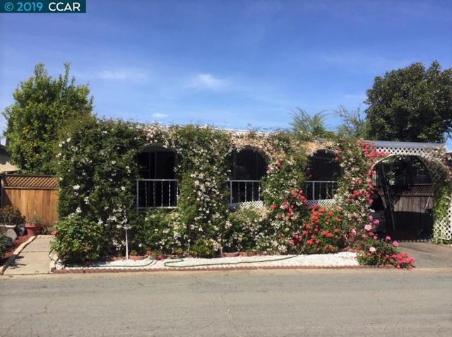 264 Safari Way, PACHECO, CA 94553 (#CC40868889) :: Strock Real Estate