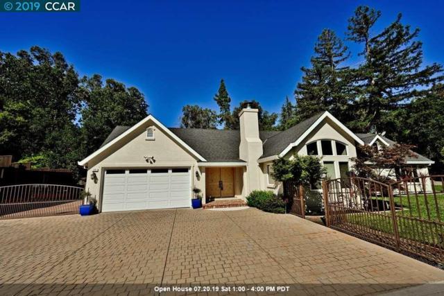 173 Vernal Dr, Alamo, CA 94507 (#CC40871841) :: Strock Real Estate