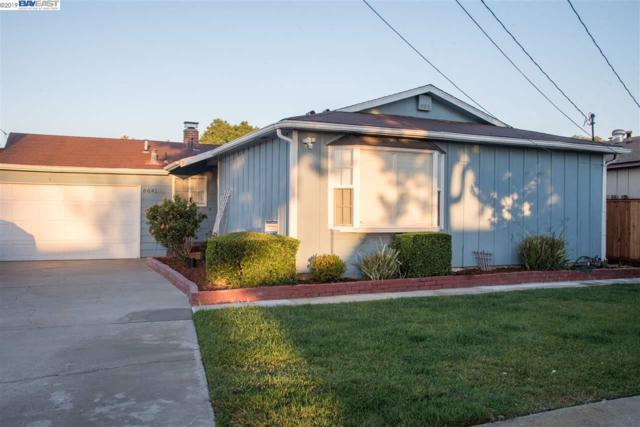 6641 Flanders Dr, Newark, CA 94560 (#BE40873012) :: Strock Real Estate