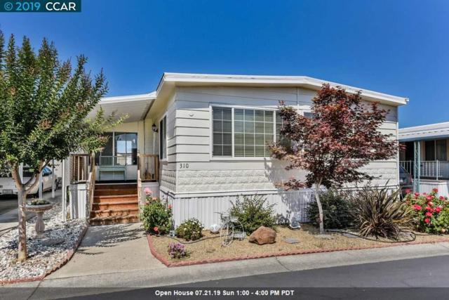310 Calle Molino, PACHECO, CA 94553 (#CC40873272) :: Strock Real Estate