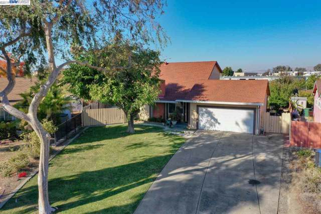 5635 Camass Ct, Newark, CA 94560 (#BE40888178) :: Strock Real Estate