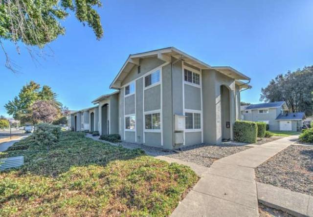4510 Thornton Ave 3, Fremont, CA 94536 (#ML81727471) :: Julie Davis Sells Homes