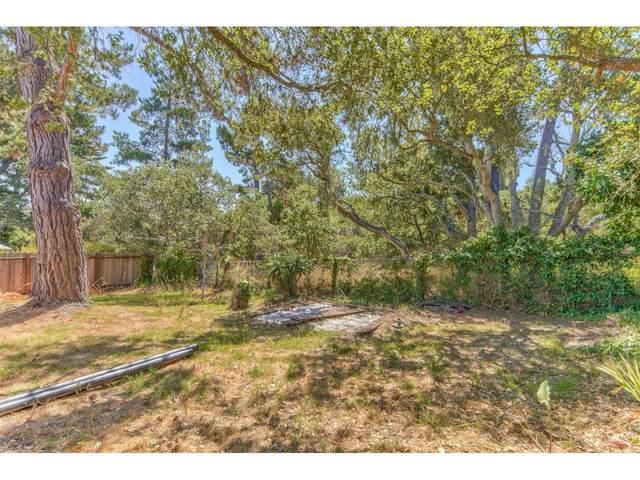 141 Via Gayuba, Monterey, CA 93940 (#ML81806259) :: The Goss Real Estate Group, Keller Williams Bay Area Estates