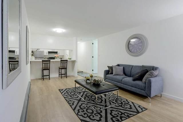 1143 Shelter Creek Ln, San Bruno, CA 94066 (#ML81837023) :: Intero Real Estate