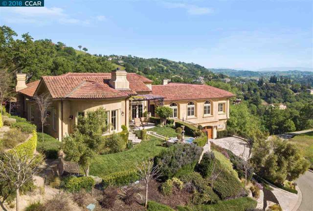 243 Michelle Ln, Alamo, CA 94507 (#CC40817995) :: The Goss Real Estate Group, Keller Williams Bay Area Estates