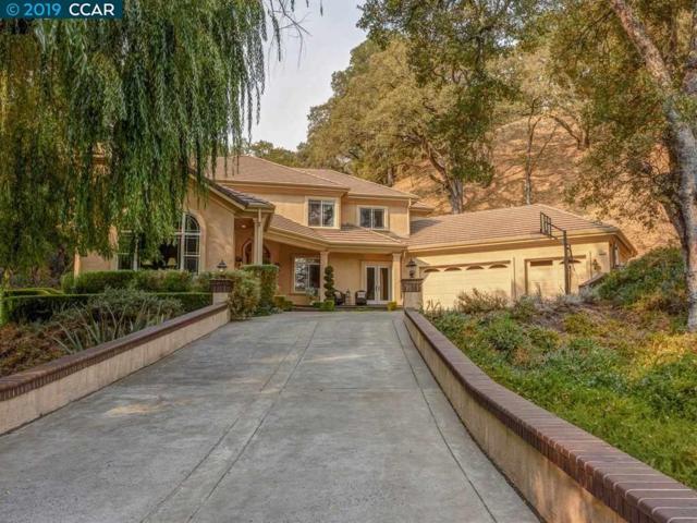 1710 Las Trampas Rd, Alamo, CA 94507 (#CC40857661) :: Brett Jennings Real Estate Experts