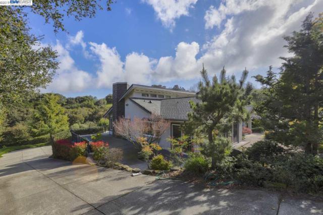6700 Mill Creek Rd, Fremont, CA 94539 (#BE40858940) :: Strock Real Estate