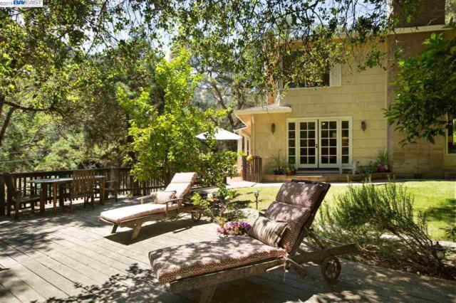 1313 Kilkare Rd, Sunol, CA 94586 (#BE40862128) :: Strock Real Estate