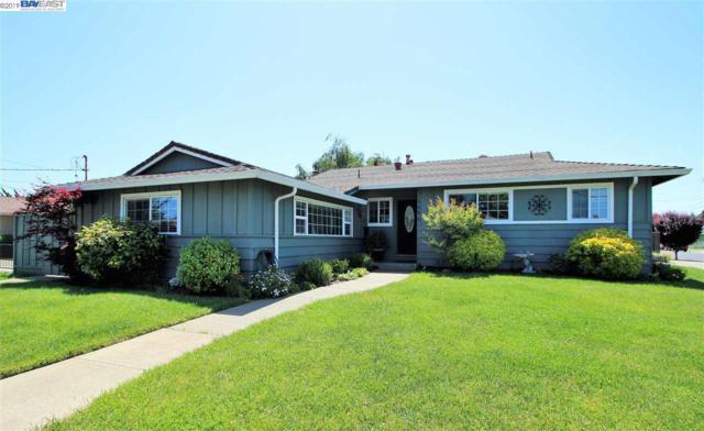 1996 Catalpa Way, Hayward, CA 94545 (#BE40863640) :: Strock Real Estate