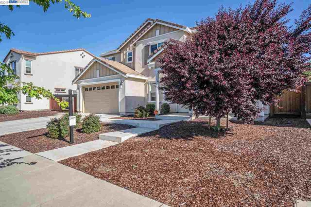 551 Belmont Ct, Brentwood, CA 94513 (#BE40863824) :: Strock Real Estate