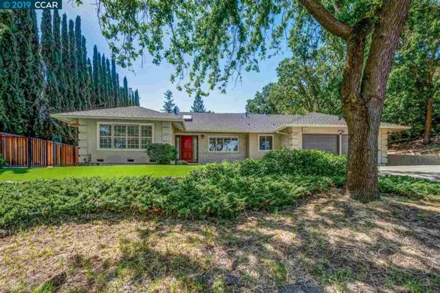 1819 Castle Hill Rd, Walnut Creek, CA 94595 (#CC40864375) :: Strock Real Estate