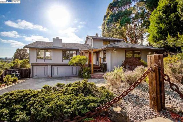 5366 Proctor Rd, Castro Valley, CA 94546 (#BE40864769) :: Strock Real Estate