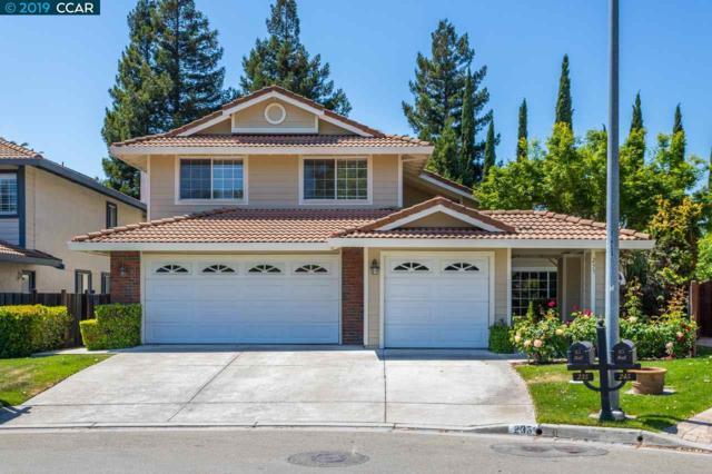 235 Rio Grande Ct, San Ramon, CA 94582 (#CC40864794) :: Strock Real Estate