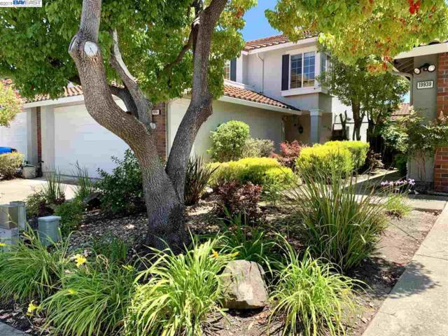 19951 Laurelwood Dr, Castro Valley, CA 94552 (#BE40871225) :: Strock Real Estate