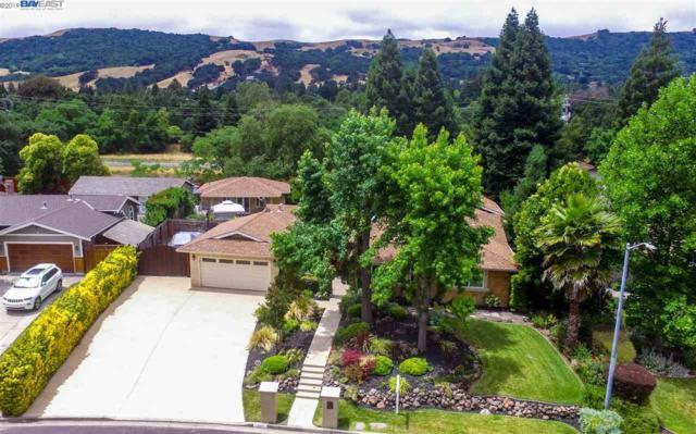 361 Princeton Lane, Danville, CA 94526 (#BE40871951) :: Keller Williams - The Rose Group