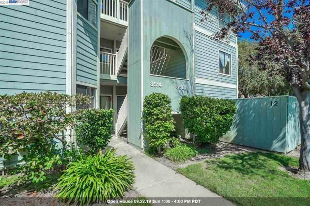 3514 Birchwood Ter, Fremont, CA 94536 (#BE40881926) :: The Goss Real Estate Group, Keller Williams Bay Area Estates