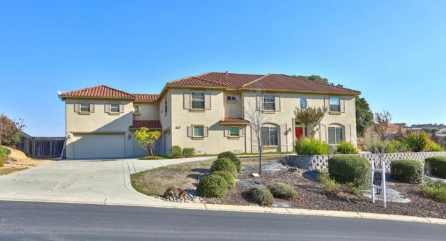 779 Avenida Del Piero, San Juan Bautista, CA 95045 (#ML81729844) :: Strock Real Estate