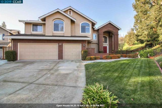 45 Glenhill Ct, Danville, CA 94526 (#CC40852368) :: Brett Jennings Real Estate Experts