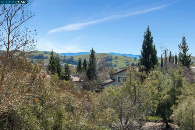 1183 Cheshire Cir, Danville, CA 94506 (#CC40854017) :: Strock Real Estate