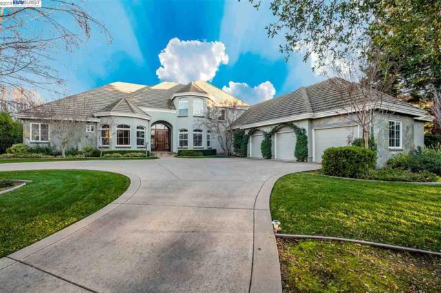 1673 Orvieto Ct, Pleasanton, CA 94566 (#BE40859021) :: The Kulda Real Estate Group